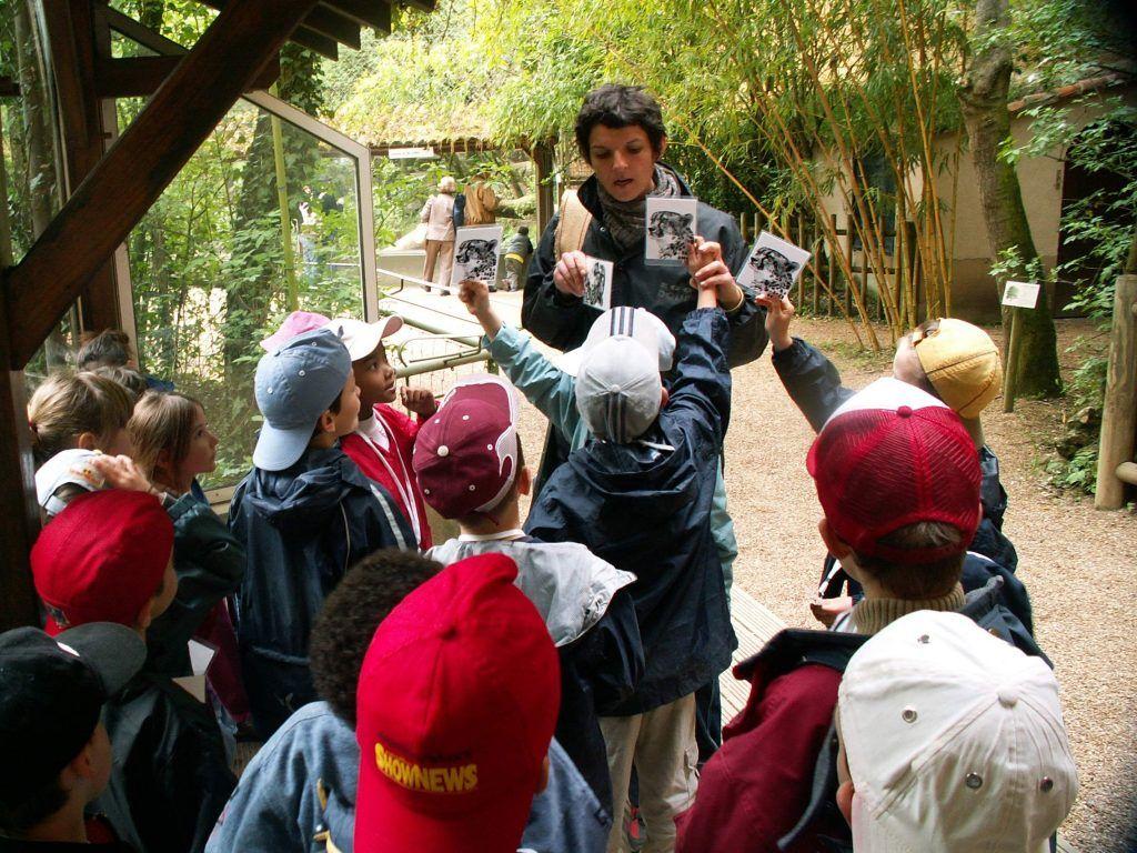 Atelier au zoo - Classe découverte Zoo