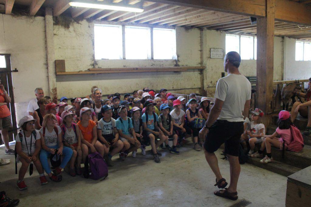 Les enfants avec le paysan - Classe découverte Vosges