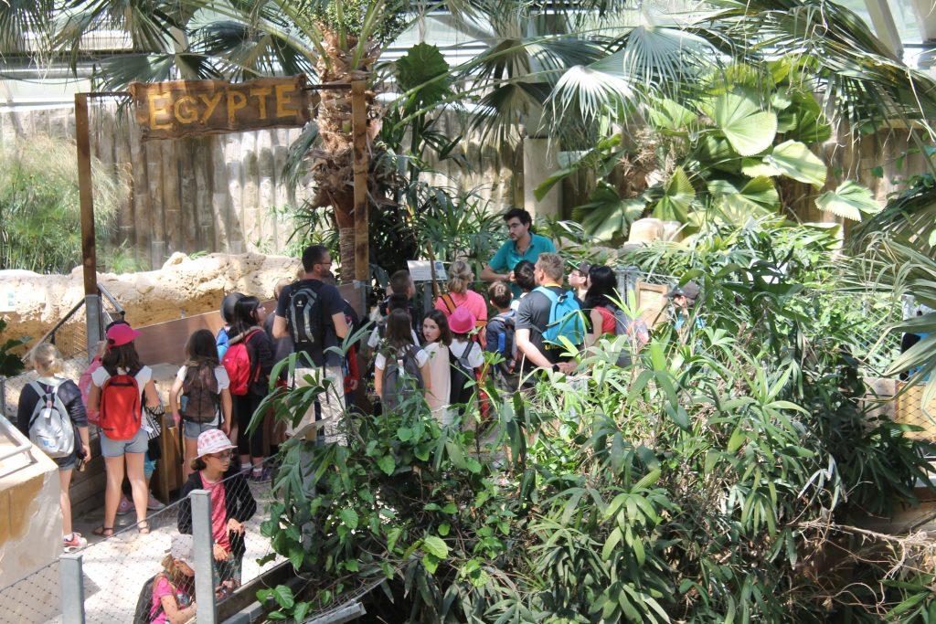 Visite Planète des Crocodiles - Séjours Educatifs Futuroscope