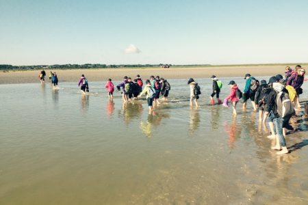 En Baie de Somme - Séjour éducatif Baie de Somme